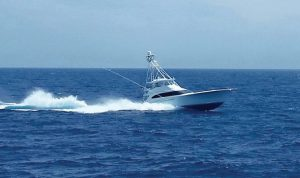 Mobile Billfish Tournament - Jul 27-29, 2019