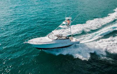 Cabo 41 promo image